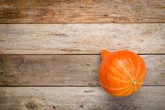 Orange hubbard winter squash Royalty Free Stock Images