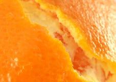 orange hud Arkivbild