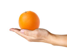 Orange on human hand Stock Image