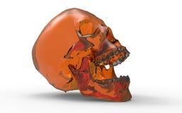 Orange human skull Stock Images
