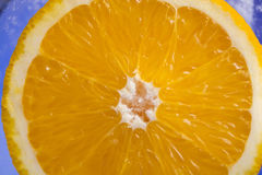 Orange in the ice p3 Royalty Free Stock Photo