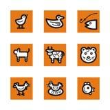 Orange icon series Royalty Free Stock Photo