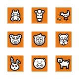 Orange icon series Royalty Free Stock Images