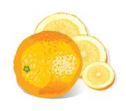 Orange (illustration) illustration de vecteur