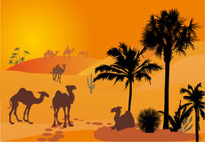 Orange illustration with camels Royalty Free Stock Photos
