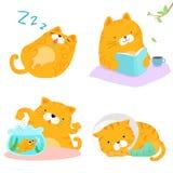 Orange illustration för packe för kattvariationshandling Arkivfoton