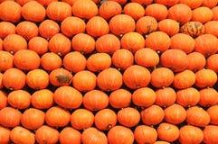 Orange illustration för vektor för design Arkivfoton
