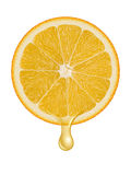 Orange illustration Royalty Free Stock Images