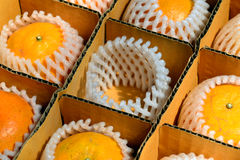 Orange im Kasten Lizenzfreies Stockbild