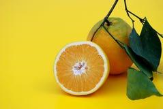 Orange im Leben stockbilder
