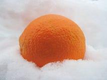 Orange im Schnee Lizenzfreie Stockfotos