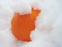 Orange im Schnee Stockfoto