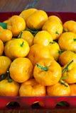 Orange im Teller. Stockfotografie