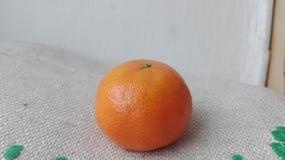 Orange. Image of a whole mandarin Royalty Free Stock Image