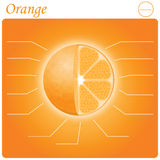 Orange infogram Royalty Free Stock Photography