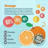 Orange infographics and vitamins in a flat style. Vector illustration EPS 10 Stock Image