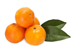 Orange isolated. On white background Stock Photo