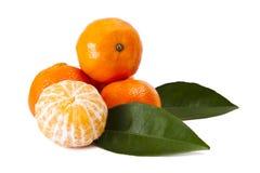 Orange isolated. On white background Royalty Free Stock Photos