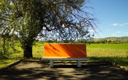 The orange isolated bench. Urbino, Italy Royalty Free Stock Image