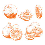Orange Isolated, Orange Vector. Composition of Orange Royalty Free Stock Photos