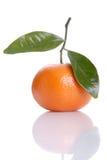 Orange isolated over white background Stock Photography