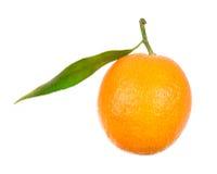Orange isolated on white Royalty Free Stock Photos