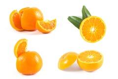 Orange. Isolated on white background Stock Photo