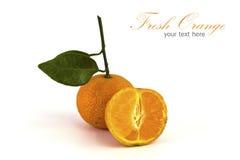 Orange isolated Royalty Free Stock Photography