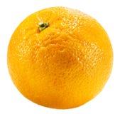 Orange isolated on the white background Stock Image