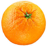 Orange isolated on a white background. Royalty Free Stock Photos