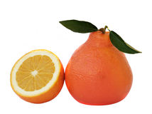 Orange and its section Royalty Free Stock Images