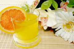 Orange juice. A wiew of a orange juice cocktail royalty free stock photography