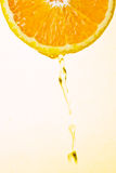 Orange juice. The orange juice drop from the orange slice Stock Images
