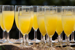 Orange juice. A collection of glasses filled with orange juice cocktails at a wedding reception Stock Photography