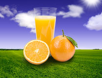 Orange juice. Background of Grass and sky Royalty Free Stock Photos