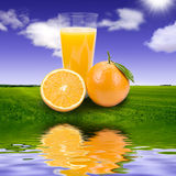 Orange juice. Background of water and sky Stock Images