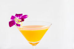 Orange juice in a cocktail glass on white background with orchid Royalty Free Stock Photo