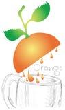 Orange juice falling in mug  Stock Photos