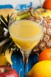 Orange juice and fresh fruits Stock Images
