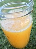 Orange Juice. Freshly squeezed in a jar Stock Photos