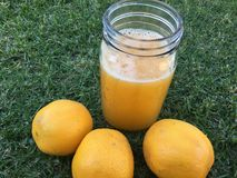 Orange Juice. Freshly squeezed in a jar Stock Images