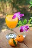 Orange juice in glass Stock Photos