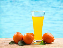 Orange juice in a glass on a table Stock Image