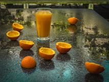 Orange juice and orange peels after rain. On the wet stone surface in garden, outdoor, close-up Stock Images