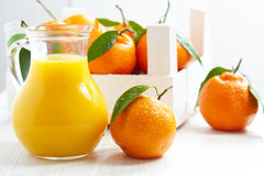 Orange juice in pitcher and tangerines Stock Image