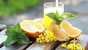 Orange juice pouring in glass on color background. Natural orange juice is poured into a glass on the nature summer day stock footage