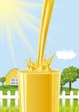 Orange juice splash Stock Photos