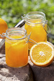Orange juice. For a sunny day party royalty free stock images