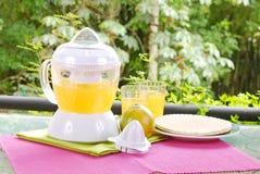 Orange juicer Royalty Free Stock Photography