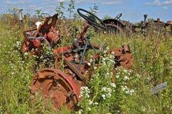 Orange junked den Traktor, der in einem Meer von wilden Blumen und von Anlagen verloren war Stockfotos
